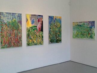 Chris McGraw, between landscape and spirits, installation view