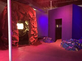 Alexis Gideon: The Comet and The Glacier, installation view