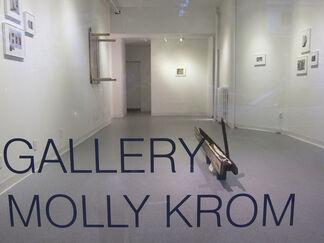 Katerina Marcelja, Amanda C. Mathis: Stripped, installation view