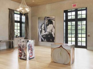 Urs Fischer: Oscar the Grouch, installation view