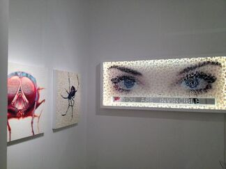 Claire Oliver at Art Miami 2013, installation view