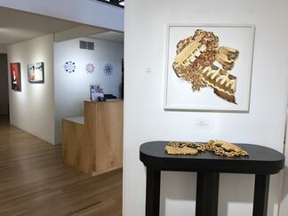 Come Back With A Warrant, installation view
