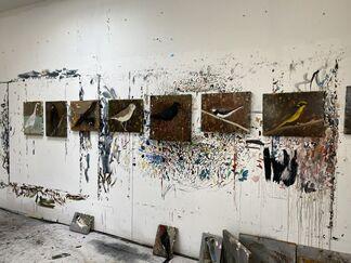 The Birds, installation view