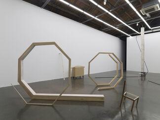 Hu Xiaoyuan: Ant Bone, installation view