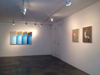 James Kudo - Epítome da Paisagem [An Epitome of Landscape], installation view