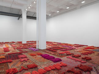 Protruding Patterns, installation view