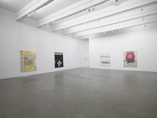 Everyone Knows What It Looks Like, installation view
