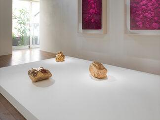 """Bosco Sodi: """"Rhus Verniciflua"""", installation view"""