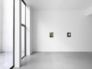 Lesley Vance, installation view