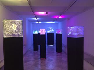 Tensions, installation view