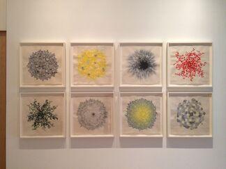 Dharma Strasser MacColl: Adaptations, installation view