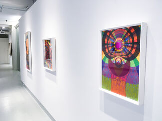 Familiar to Millions, installation view