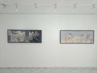 Zied Lasram, installation view