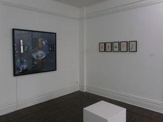 Chorus 合唱团, installation view