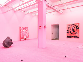 Brian Kokoska & Chloe Seibert: Night Cage, installation view