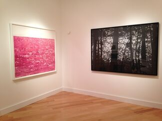 Mila Libman: Second Nature, installation view