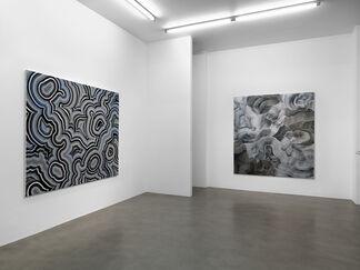 Bernard Frize: Colour Divides, installation view