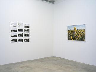 Elina Brotherus - I Am Still Alive, installation view
