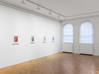James Welling: Transform, installation view