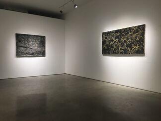 Nicole Collins: One Shot, installation view