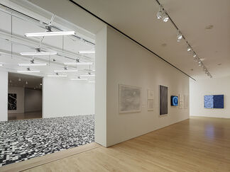 Field Conditions, installation view