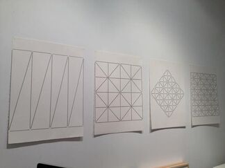 Lines Crossed: Inner Spaces, installation view