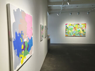 Carolanna Parlato - A Delicate Balance, installation view