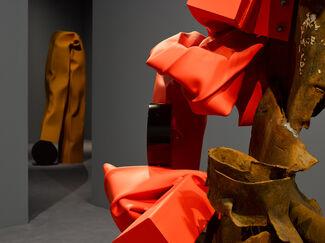 Carol Bove, installation view