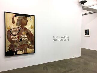 Peter Aspell (1918 - 2004), installation view