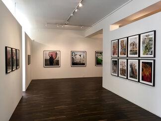 Stephen Gill, installation view