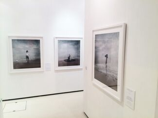 Michael Cook   CIVILISED, installation view
