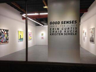 Good Senses, installation view