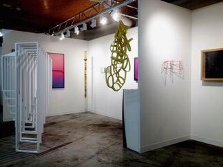 The Flat - Massimo Carasi at VOLTA13, installation view
