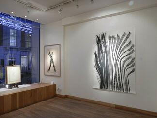 Teresa Goncalves Lobo, installation view