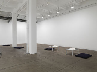 The Riverbed, installation view