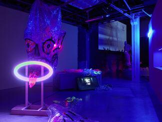 Tianzhuo Chen, installation view