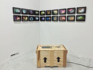 ART 3 at Zsona MACO 2016, installation view
