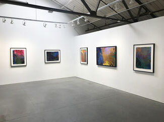 Looming Pine, installation view