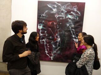 Closer to the Skin, installation view