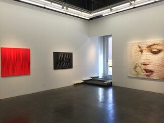 Efflorescence, installation view