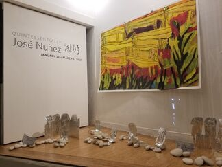 Quintessentially José Nuñez, installation view
