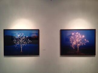 Palette of Light, installation view