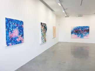 Chris Kahler: Metaphemeral, installation view