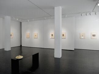 Tori, Masao Yamamoto, installation view