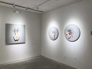 FRAGMENTA: Micaela Lattanzio, installation view