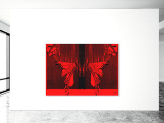 Butterfly, installation view