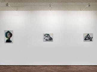 Damien Meade - Sudo, installation view