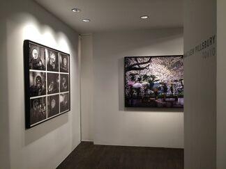 "Matthew Pillsbury ""Tokyo"", installation view"