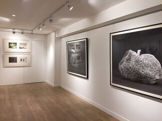Images of Objects: Photographic Calligraphy by Chu Chu, installation view