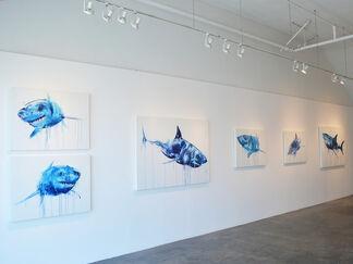 Dave White | Apex, installation view